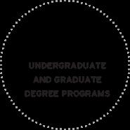 York University has 200+ undergraduate and graduate degree programs