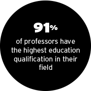 94% of York professors have the highest education qualification in their fields